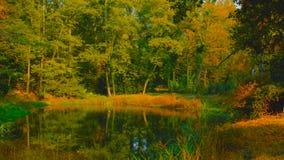 Forest Lake no outono adiantado 2019 do polandin central imagem de stock royalty free