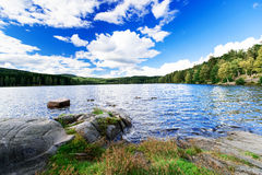 Forest lake at Norway Stock Images