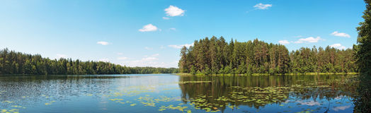 Forest lake panorama Stock Photography