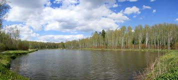 """Forest lake panorama. Panorama of forest lake at spring (background). Russia, Moscow, National Park """"Island of Elk Stock Photos"""