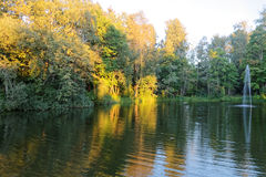 Forest lake. Park, Forest lake, near Moscow Royalty Free Stock Image
