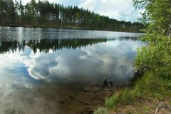 Forest lake with reflection of sky and clouds.  Stock Photos