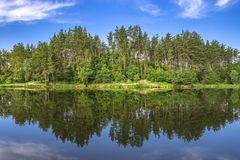 Forest lake with reflection in water. Summer relax background.  royalty free stock image
