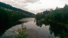 Forest lake. Lake scene under cloudy sky royalty free stock photo