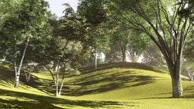 Forest at the lake shore in summer 3d rendering Royalty Free Stock Photos