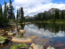 Forest Lake. The forest lake in national park Ergaki, Krasnoyarsk region, Siberia Royalty Free Stock Photos