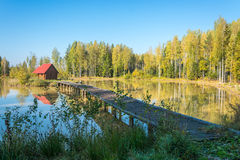 Forest lake. Small house in the middle of a small forest lake. On the shores of lake birch with yellow leaves Stock Photography