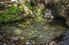 A forest lake with a small waterfall is consecrated by the day sun,. In the foreground the stones are visible under the water Royalty Free Stock Image