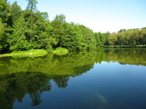 Forest lake in summer. Summer landscape - lake and forest around, reflection of trees in water. Recorded in Izmaylovskiy park in Moscow Russia Royalty Free Stock Photo