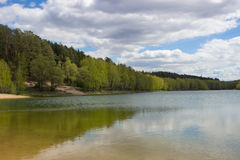Forest Lake. A forest lake on a summer day Royalty Free Stock Images