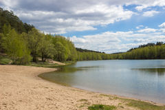 Forest Lake. A forest lake on a summer day Royalty Free Stock Image