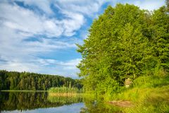 Forest lake, summer landscape Royalty Free Stock Photos