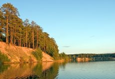 Forest lake on sunset light royalty free stock photo