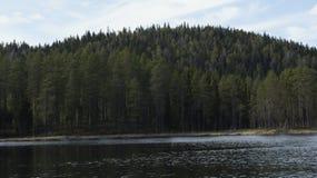 Forest Lake in Svezia Fotografie Stock Libere da Diritti