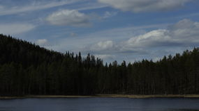 Forest Lake in Sweden. Royalty Free Stock Photo