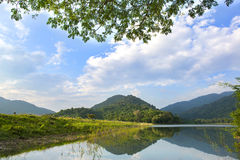 Forest lake under blue cloudy sky Royalty Free Stock Image