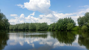 Forest lake under blue cloudy sky Royalty Free Stock Images