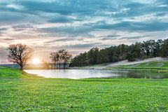 Forest lake under blue cloudy sky royalty free stock photo