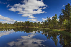 Forest lake under blue sky Stock Photography