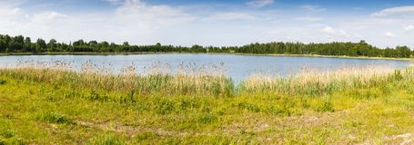 Forest lake under blue sky Royalty Free Stock Images