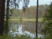 Forest lake. Very beautiful and the water is clear ,can see the bottom even 10 meters depth Royalty Free Stock Images