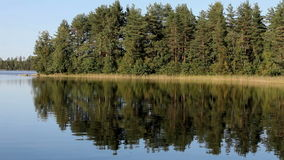 Forest Lake. In the water reflected the blue sky and the surrounding forest stock footage