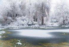 Forest lake at winter time Stock Photo