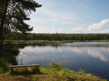 Forest lake with a wooden bench on the coast. Royalty Free Stock Photos