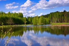Forest Lake. Lake of the Woods. Spring, a reflection of the sky Royalty Free Stock Photos