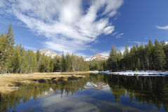 Forest lake in Yosemite Stock Photo