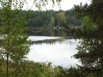 Forest Lakes i sommar arkivbild