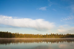 Forest lakeside landscape at summer morning Stock Photography