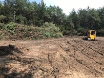 Forest Land-opheldering met bulldozer royalty-vrije stock foto