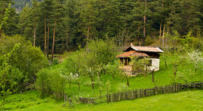 Forest landscape. Bulgarian forest spring landscape; old forest house Royalty Free Stock Photos
