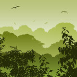 Forest Landscape Royalty Free Stock Image
