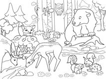 Forest Landscape with animals coloring vector for adults Royalty Free Stock Photography