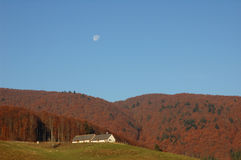 Forest landscape in autumn. With blue sky and the moon and red leaves Stock Image