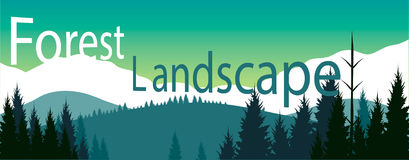 Forest landscape banner. Vector for your ideas Royalty Free Stock Images