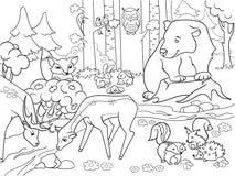 Forest Landscape con los animales que colorean el vector para los adultos Fotografía de archivo libre de regalías