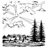 Forest Landscape conifére Illustration de Vecteur