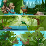 Forest Landscape Horizontal Banners Set Royalty Free Stock Photography