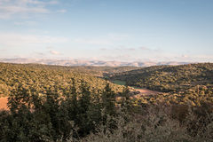 Forest landscape in Israel with clouds, trees, mountains and blue sky Royalty Free Stock Photography