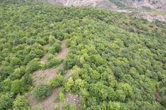 Forest landscape. The landscape in Armenia (Tatev). Stock Image