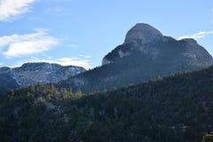 Forest Landscape montañoso Fotografía de archivo