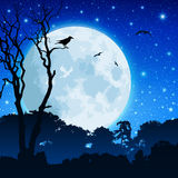 Forest Landscape with Moon Royalty Free Stock Photo