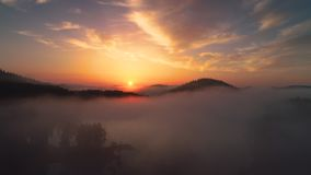 Forest landscape and morning fog over the mountain lake, aerial drone view. Forest landscape and morning fog over the lake in spring season video stock video