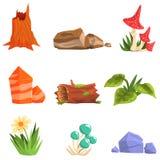 Forest Landscape Natural Elements, plantas y setas Imagen de archivo libre de regalías