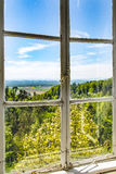 Forest landscape on old wooden window Stock Image