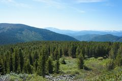 Forest landscape of the Sayan Mountains. Siberia. Royalty Free Stock Photography