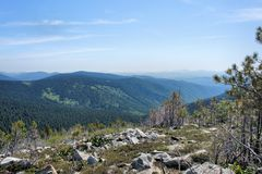 Forest landscape of the Sayan Mountains. Siberia. Stock Photography